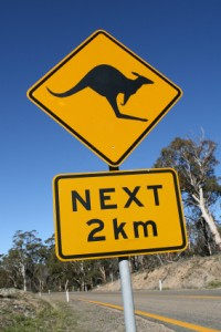 Australia: investors leaping with excitement