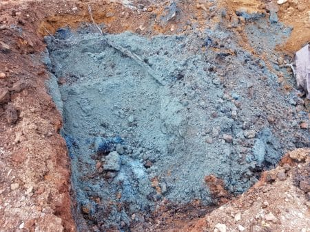 Blue Billy identified on a development site in Tonbu, Bridgend. Picture from envirotreat.com